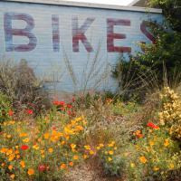 """""""Bike"""" mural at the Pedaler"""